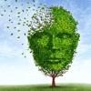 Alzheimerio liga