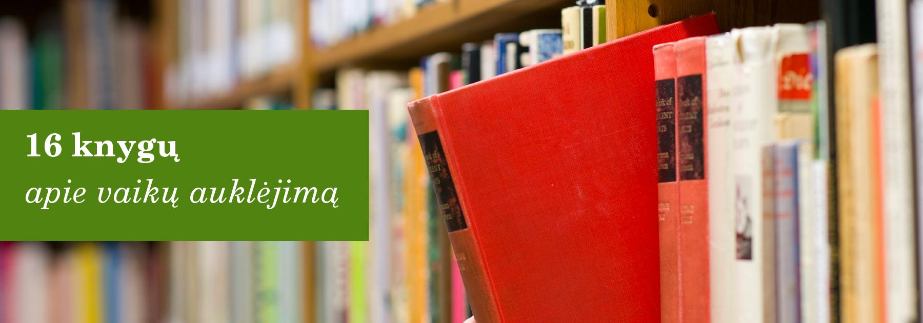 knygos-apie-vaiku-auklejima