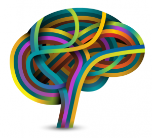 SQ_Brain