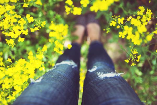 ant savo kojų