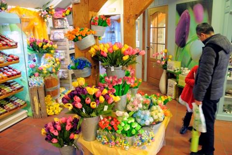spalvotos-gėlės