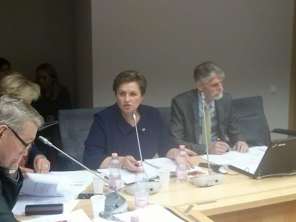 Sveikatos reikalų komiteto posėdis - Dangutė Mikutienė